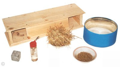 Essential chinchilla items - chinchilla pellets, hay, water, dustbath and pumice stone.  Chinchilla Chronicles.